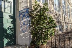 Weed Tree Graffiti to Mr. Donahue of Philadelphia (048)