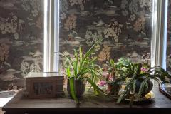 Plants on the Dresser to Mr. Poulin and Mr. Roeckle of Philadelphia (055)