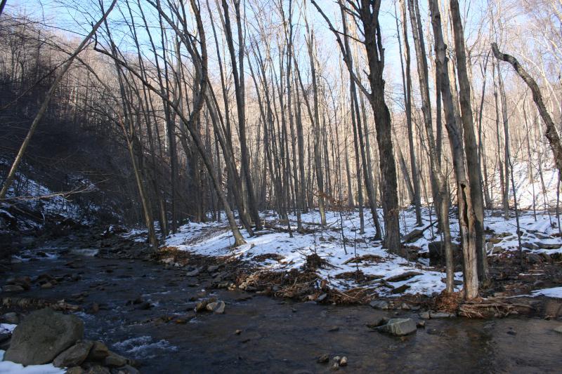 Devils Hole Creek