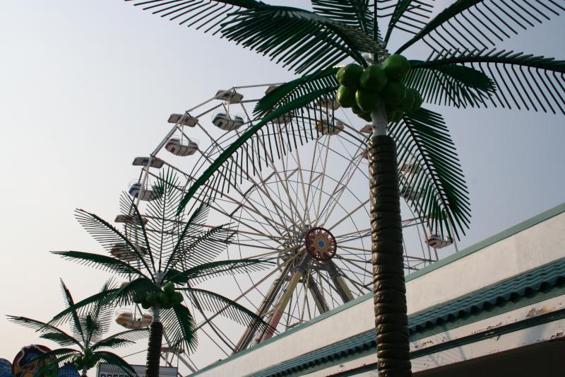 Ferris Wheel  Fake Plastic Trees