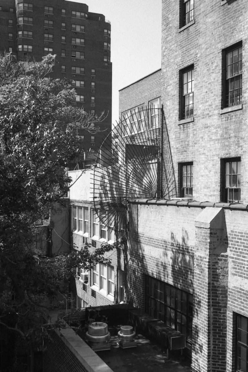 from the fire escape