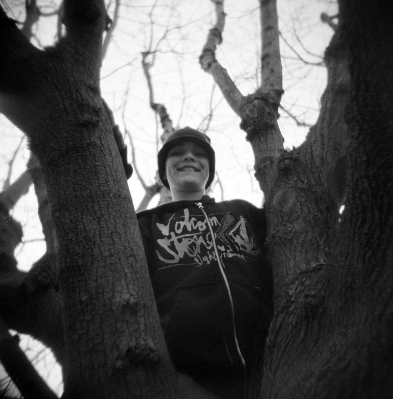Jordan in a Tree
