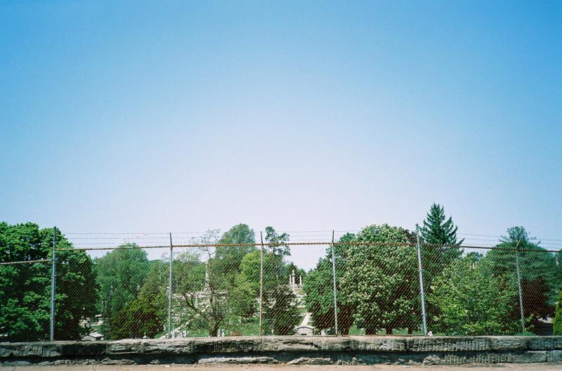 Laurel Hill Fence