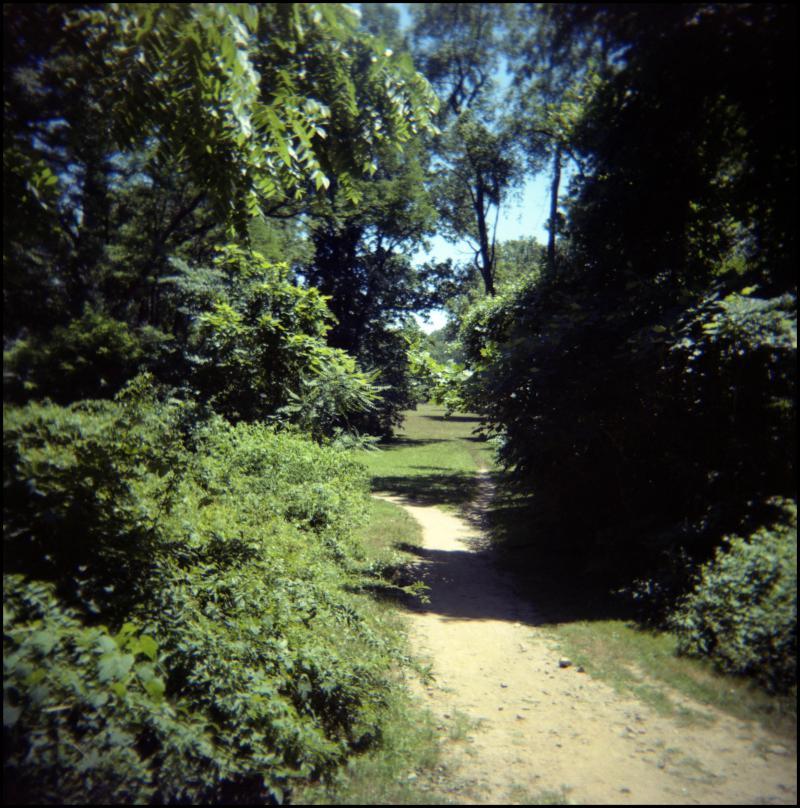 path-field