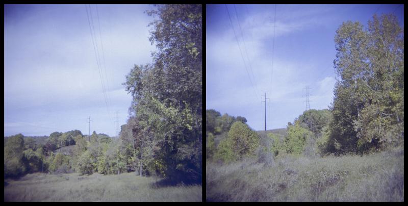 powerline-diptych