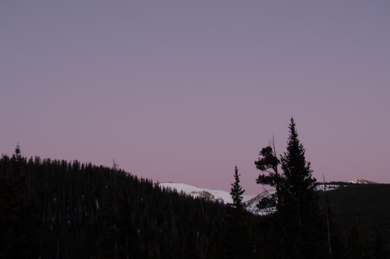 purple morning