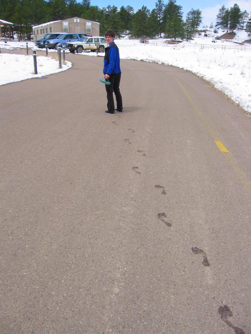 Slushy Footprints 2