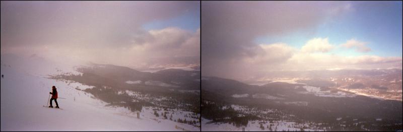 snowy-diptych
