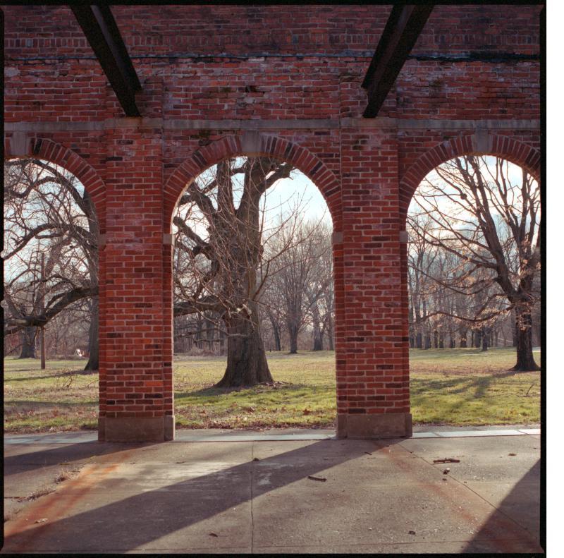 Strawberry Mansion Ruin